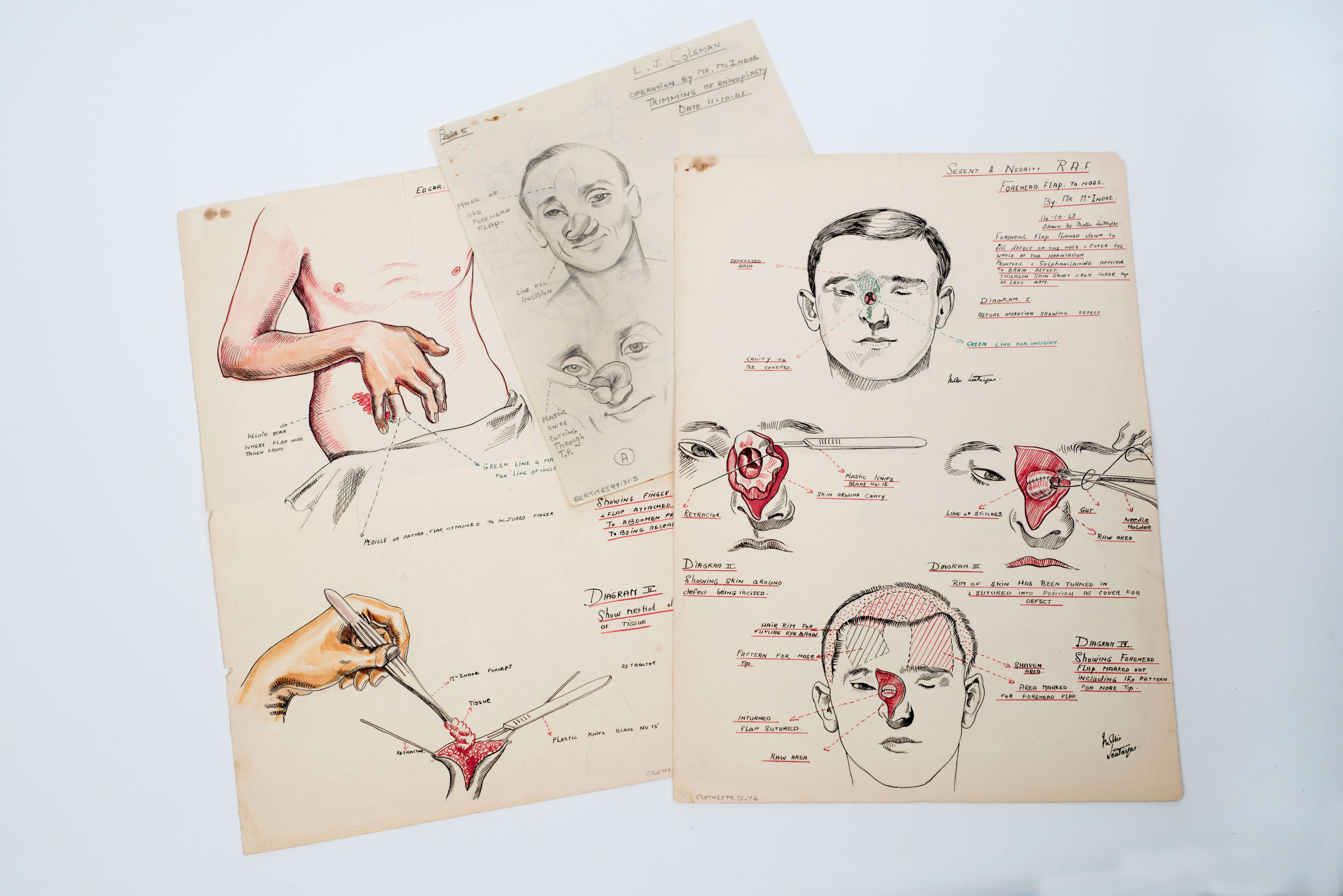 selection of drawings by vad nurse molly lentaigne